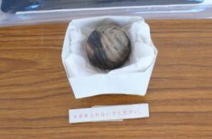 出土遺物を一つご紹介します。これは一見土の玉に模様を書いた物のように見えますが、中が空洞になっており、小さい土玉が入っています。縄文人の技術ってすごい!