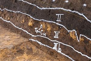 地層Ⅲの黄土色に見える部分は、現在の十和田湖が約5000年前に大爆発して降らせた火山灰が良い状態で残されています。住居跡はこの地層より下から見つかっているので、もっと古い時代であることがわかります。(西調査区)