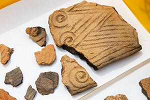 ワラビの芽のように巻いた模様の入った、縄文前期初めごろの土器破片が出土しました。土器を焼く前、乾燥工程でのひび割れを防ぐため、粘土に植物の繊維を混ぜてから土器を形成したそうです。すごい知恵ですね!(西調査区)