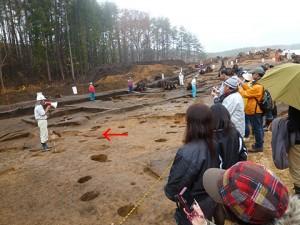 竪穴住居跡の説明です。地面の一部に見える、赤っぽい部分は火を焚いた跡です。丸い穴は、柱を建てた穴です。