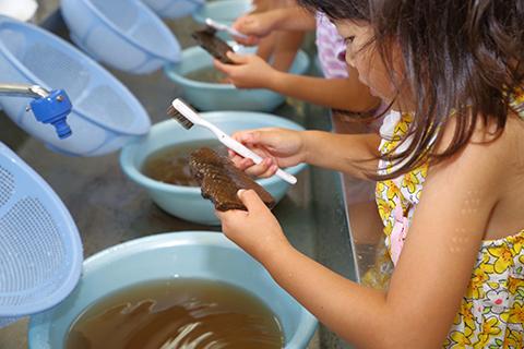 土器水洗い