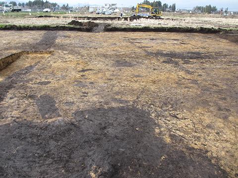 写真2 平成30年4月11日現在 手前:古代の竪穴住居跡 右奥:中世の竪穴建物跡